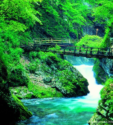 triglav national park, Vintgar gorge, lake bled holidays