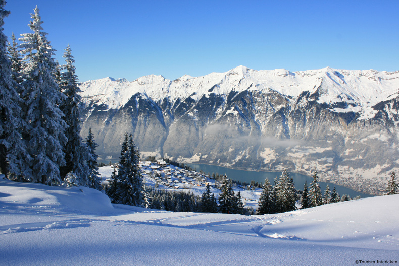 lake brienz in winter looking from the jungfrau