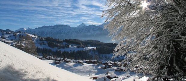 lake thun chalets for rent, interlaken