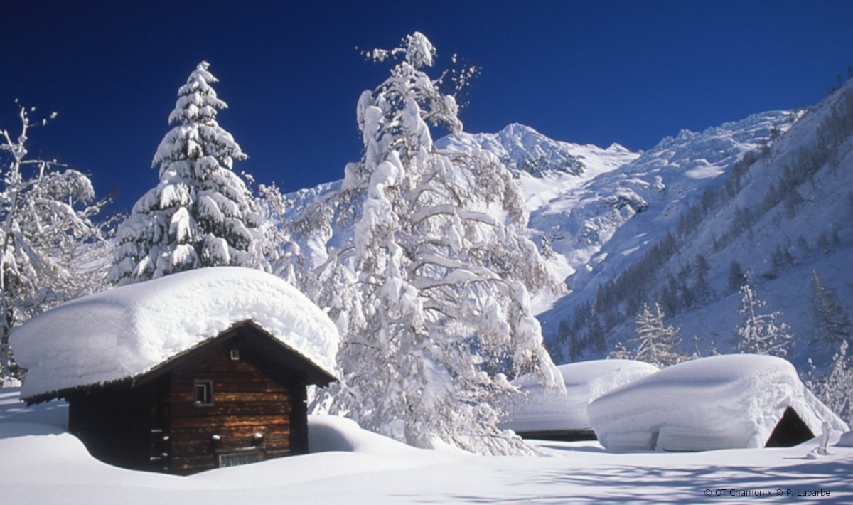 ski chalets to rent and buy