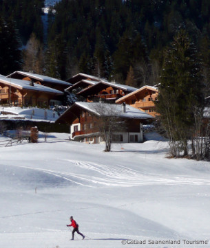 gstaad ski resort and accommodation guide, Glacier-Alpes Vaudoises ski area, ski holidays in gstaad