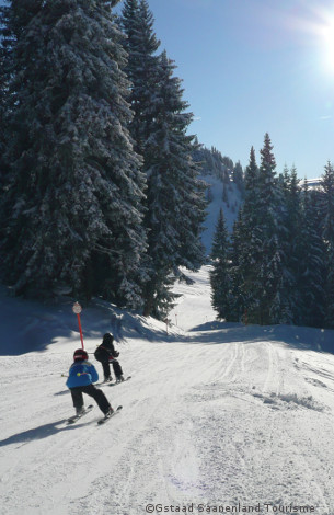 skiing in gstaad, ski chalets and apartments to rent, gstaad accommodation