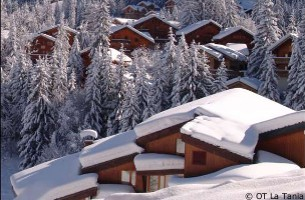 ski chalets in la-tania to rent for ski holidays, accommodation, holiday rentals in les-3-vallees