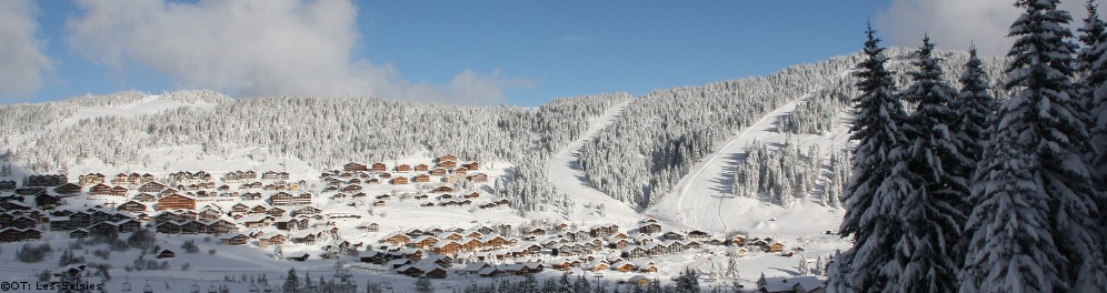 My Chalet Finder Ski Accommodation